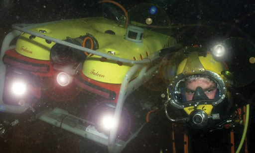 Diving Inspection